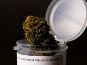 CA-medical-marijuana-in-jar